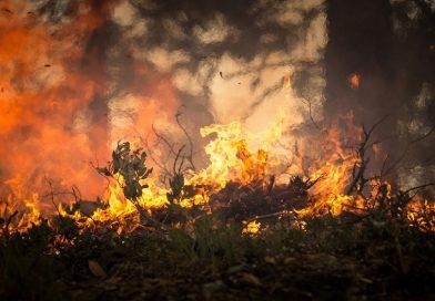 România este pregătită să ajute la stingerea incendiilor din Australia